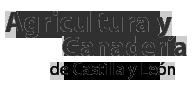 Logotipo del Portal de Agricultura y Ganadería de Castilla y León; Ir a página principal